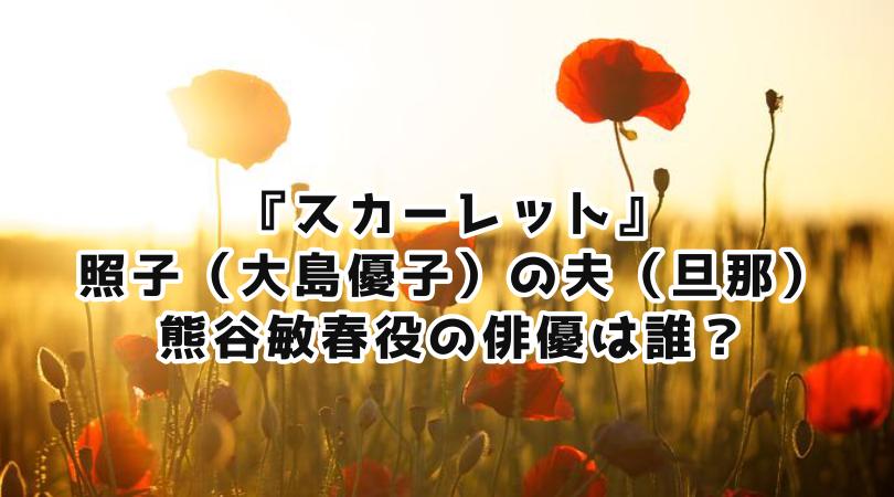 スカーレット』照子(大島優子)の夫(旦那)役の俳優は本田大輔